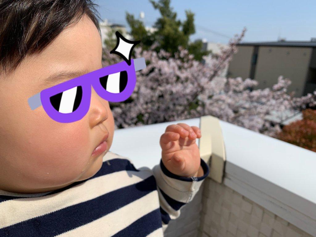 初めての桜と風を感じる10か月頃の娘